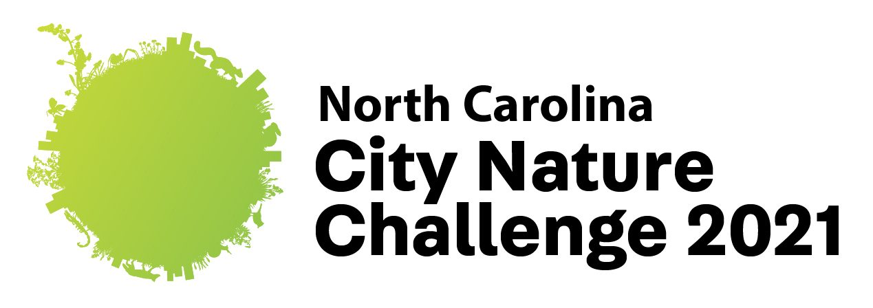 NC City Nature Challenge